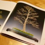 Noelanders Trophy 2012 : le livre de l'exposition
