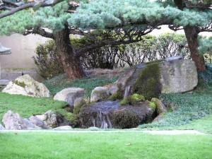 Cascade du jardin japonisant chez Crespi Bonsai