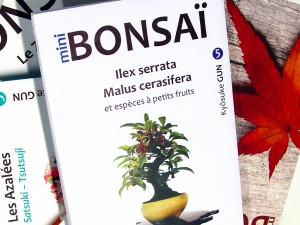 Livre mini bonsai Kyosuke Gun Maillot Bonsai