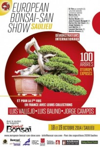 European Bonsai San Show de Saulieu