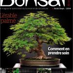 Magazine Esprit Bonsai #71 est sorti