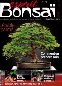 Esprit Bonsai 71