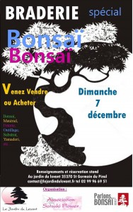 Braderie Bonsaï