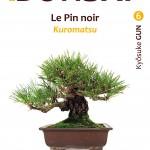Kyosuke Gun : mini bonsaï de pin noir