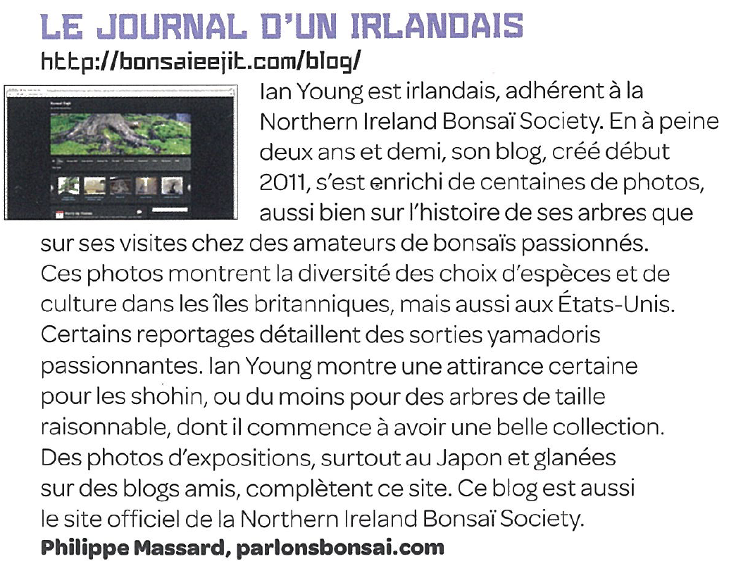 Magazine Esprit Bonsai, Ian Young alias bonsaieejit.com
