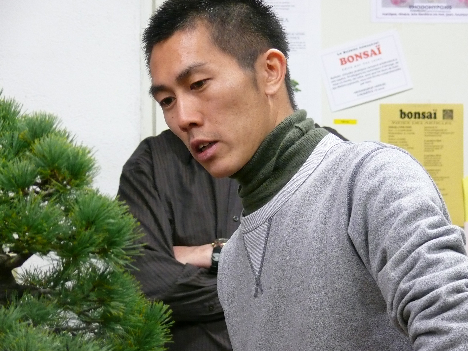 Shiino Kentaro, le plus jeune maitre bonsai du Japon