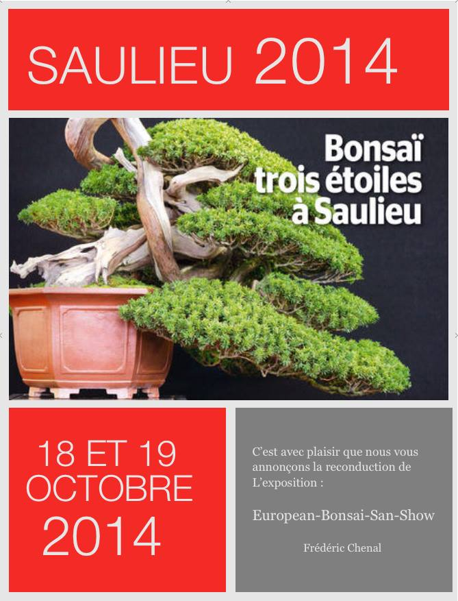 European Bonsai San Show