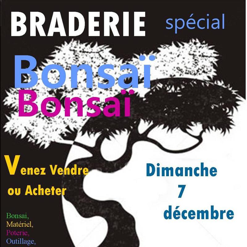 braderie bonsai 7 décembre 2014